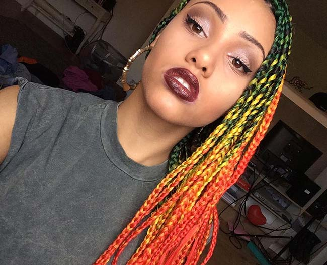Awesome Box Braids Hairstyles: Colorful Box Braids