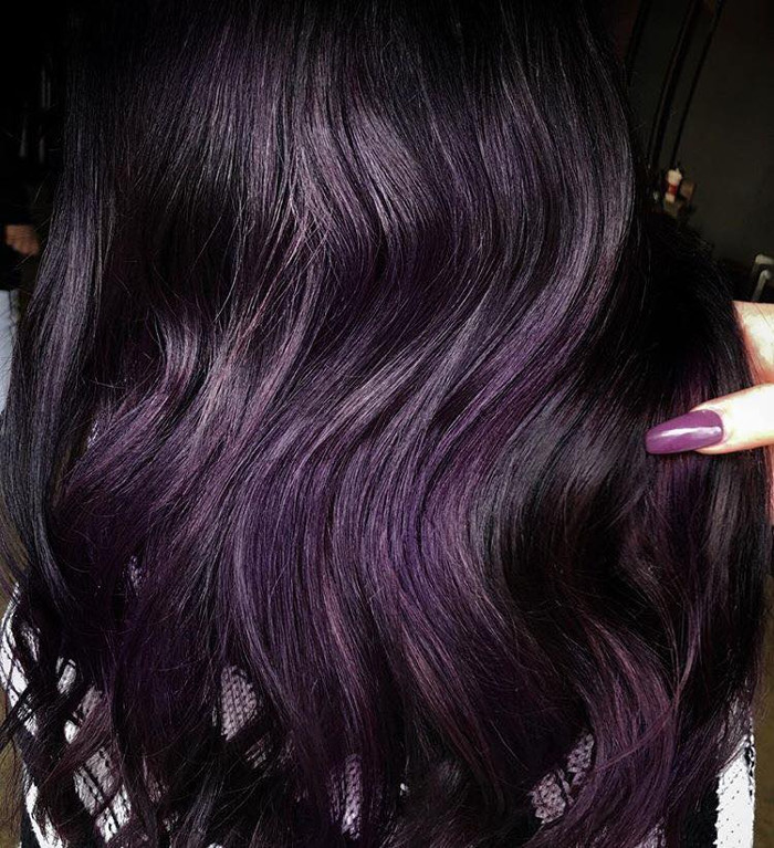 Color Trends What S New What S Next: Blackberry Hair Is The Unexpected Spring Hair Color Trend