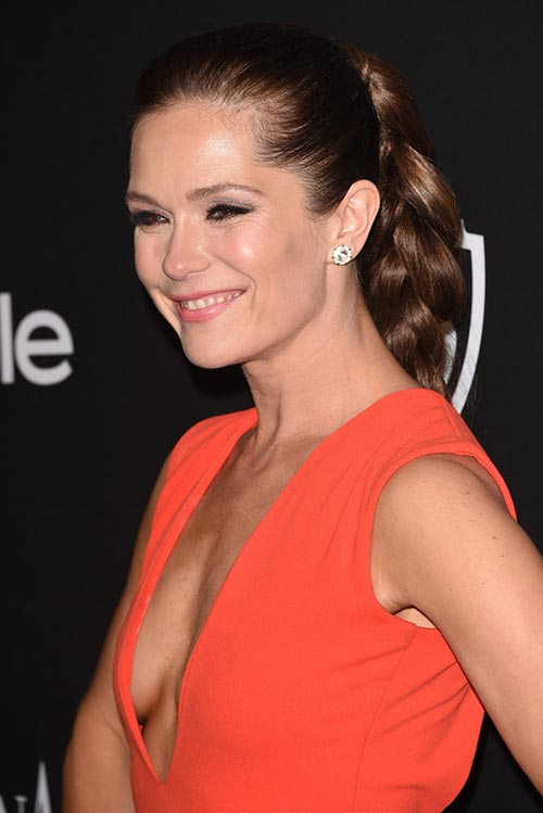 2015 Stylish Celebrity Hairstyles: Katie Aselton Braided Ponytail